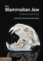 The mammalian jaw : a mechanical analysis