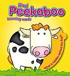 My peekaboo fun : learning words : what is hidden behind the flap?.