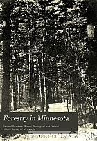 Forestry in Minnesota.