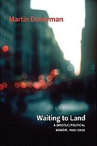 Waiting to land : a (mostly) political memoir, 1985-2008