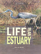 Life in an estuary