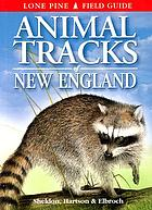 Animal tracks of New England