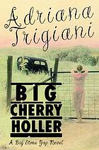 Big Cherry Holler : a Big Stone Gap novel