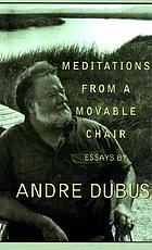 Meditations from a movable chair : essays
