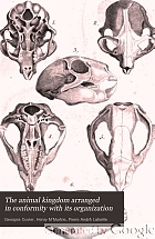 The animal kingdom arranged in conformity with its organization,
