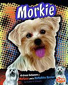 Morkie : a cross between a Maltese and a Yorkshire terrier