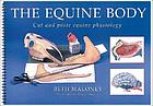 The equine body : cut and paste equine physiology