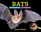 Bats : biggest! littlest!