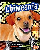 Chiweenie : a cross between a Chihuahua and a Dachshund