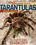 Tarantulas : supersized predators by  Sandra Markle