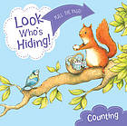 Look who's hiding! Counting