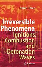 Irreversible phenomena : ignitions, combustion, and detonation waves