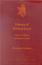 History of Biblical Israel : major problems and minor issues