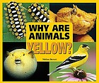 Why are animals yellow?