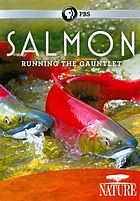 Nature. / Salmon-- running the gauntlet
