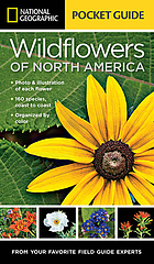 Pocket guide to the wildflowers of North America