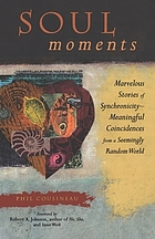 Soul moments : marvelous stories of synchronicity--meaningful coincidences from a seemingly random world