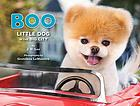 Boo : little dog in the big city