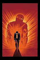 Essential. Vol. 3, The amazing Spider-Man.