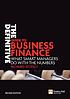 The definitive guide to business finance : what... by  Richard Stutely