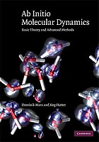 Ab Initio Molecular Dynamics : Basic Theory and Advanced Methods.