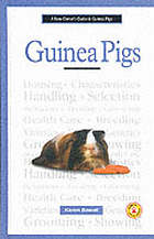A new owner's guide to guinea pigs