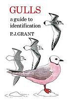 Gulls : a guide to identification
