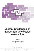 Current challenges on large supramolecular assemblies