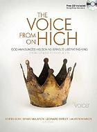 The voice from on high : God announces his son as Israel's liberating king : from Genesis to Revelation