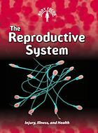 The reproductive system : injury, illness, and health