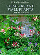 Climbers and wall plants : a practical guide
