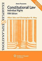 Constitutional law--individual rights : examples & explanations