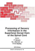 Processing of Sensory Information in the Superficial Dorsal Horn of the Spinal Cord