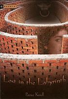 Lost in the labyrinth : a novel