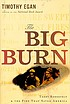 The big burn : Teddy Roosevelt and the fire that... by  Timothy Egan
