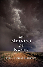 The meaning of names : a novel
