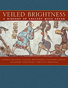 Veiled brightness : a history of ancient Maya color