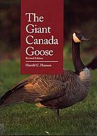 The giant Canada goose