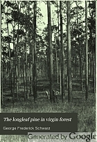 The longleaf pine in virgin forest; a silvical study,