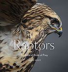 Raptors : portraits of birds of prey