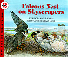 Falcons nest on skyscrapers