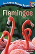 Flamingos by  Jean M Malone