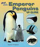 Emperor penguins up close