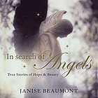 In search of angels : true stories of beauty and hope