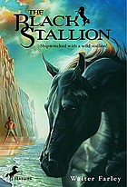 The black stallion;