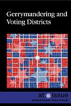 Gerrymandering and voting districts