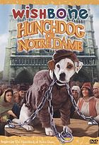 The hunchdog of Notre Dame