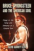 Bruce Springsteen and the American soul : essays on the songs and influence of a cultural icon
