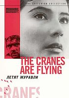 Cover Art for The Cranes are Flying