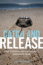 Catch and release : the enduring yet vulnerable horseshoe crab